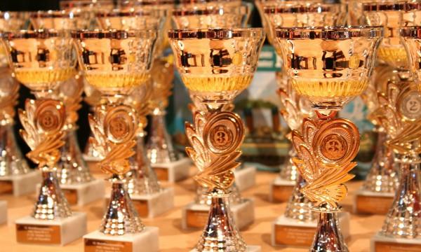 Pokrenimo obnovljivu Hrvatsku - trofeji