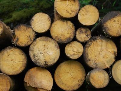 Biomasa pridonosi ekološkoj održivosti i ekonomskom razvoju