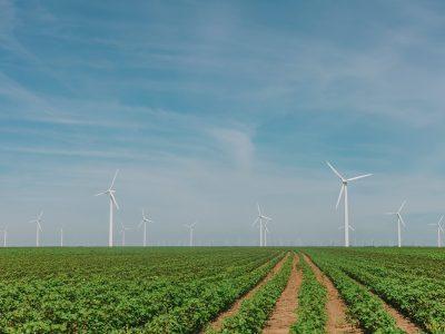 Četiri države SAD-a zaslužne za više od polovice proizvodnje energije vjetra u zemlji
