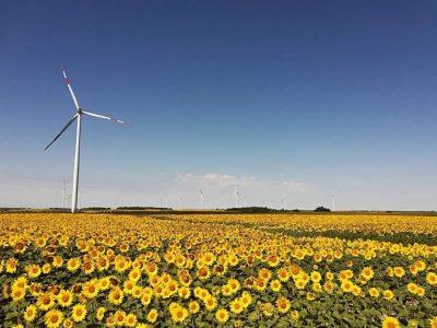 Belgijska tvrtka Elicio Wind razvija nove projekte vjetroelektrana na području Pančeva