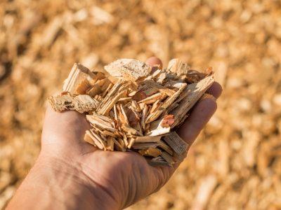 ZEZ poziva gospodarstvenike na virtualni događaj o agrobiomasi