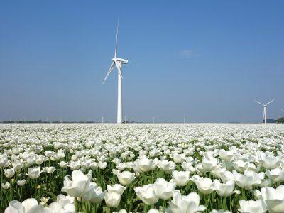 Obilježen Svjetski dan vjetra